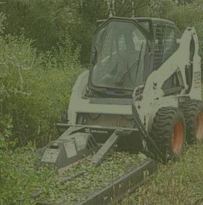 Brainerd Area Tree Services