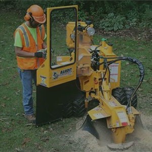 Crosslake MN Stump Grinding