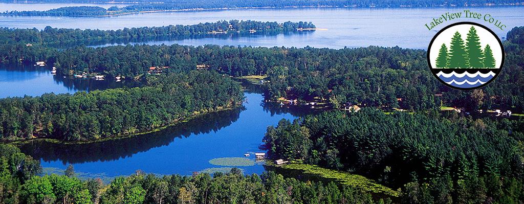 Lakeview Tree Company