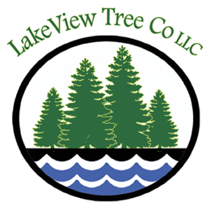 Lakeview Tree Co - Crosslake, MN