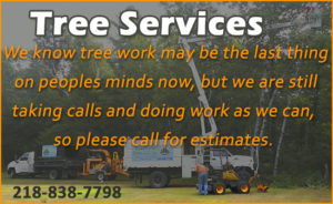 Call Now for Free Tree Removal Estimates